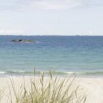 beach_panorama_small